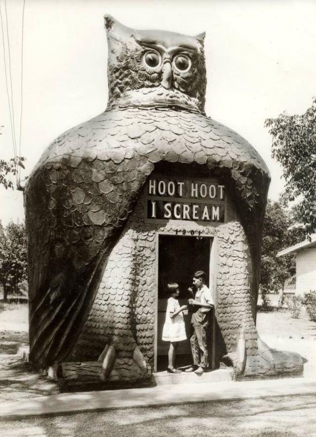 Hoot Ice, Scream, Hoot Hoot, Ice Cream, Places, Los Angels, Owls, Icecream, Hoothoot