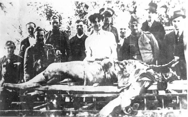 Milos Teslitch, an Orthodox Serb industrialist, after having been burned in the town of Sisak. One Ustashi is holding the heart of the victim.