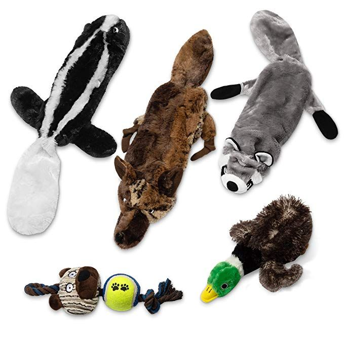 24seven Wellness And Living Adorable Pack Of Squeaky Dog Toys This