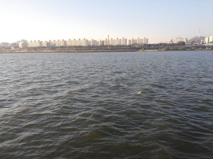 채빛섬에서 본 강입니다. 배를 탄 기분이 들어요.