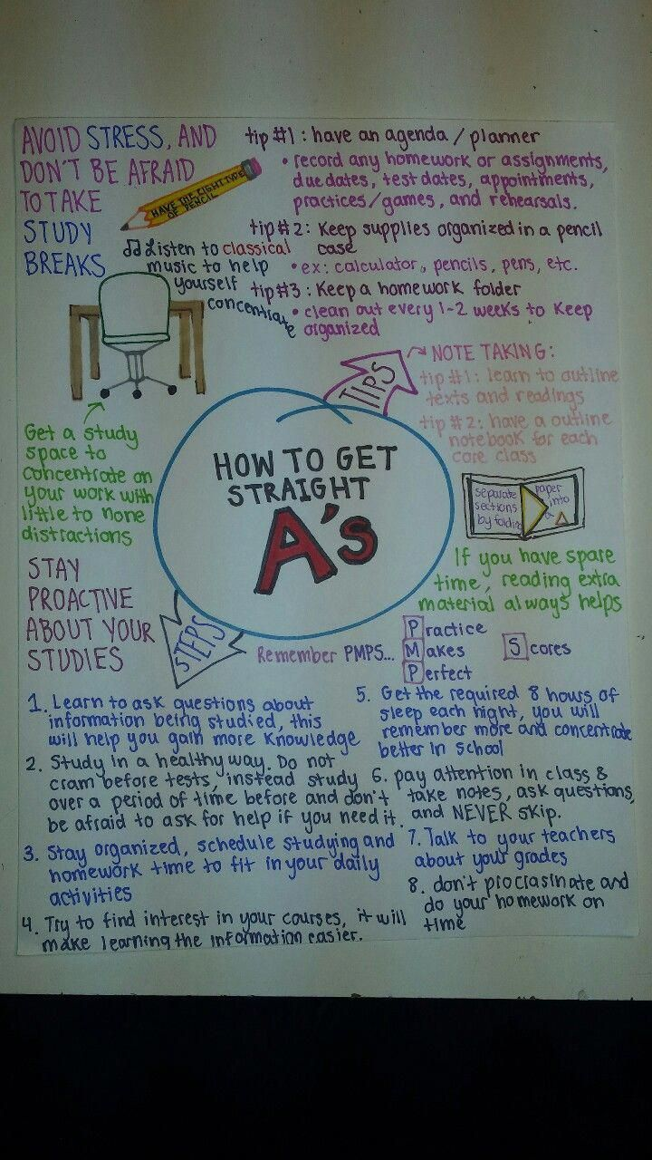 How To Get Straight A's In University   xloimsei