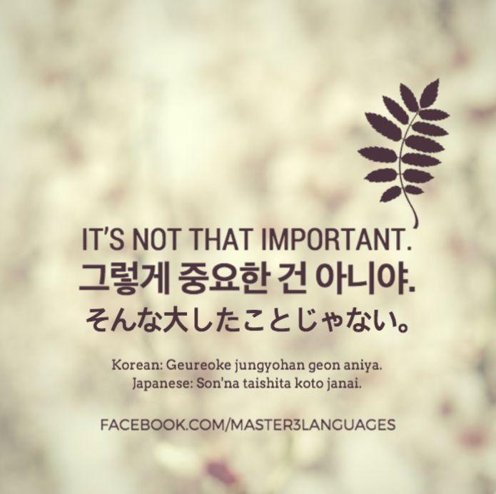 It's not that important.Korean• Hangul: 그렇게 중요한 건 아니야. (Informal) • Romanization: Geureoke jungyohan geon aniya. • Today's Vocab Lesson: Winter Related Korean Words Japanese• Kana:...