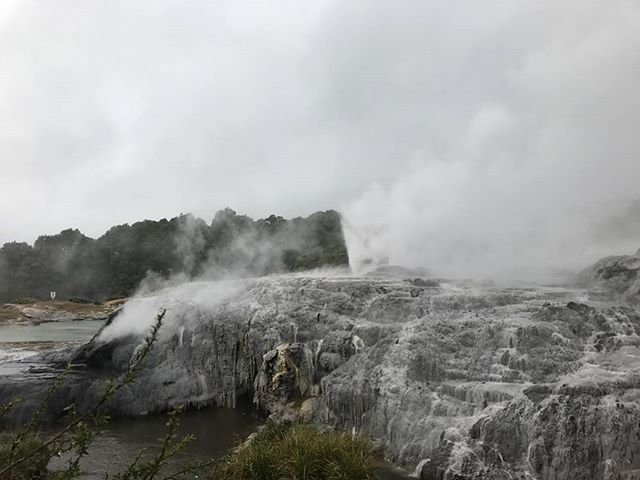 Even on a stormy day Te Puia never disappoints! Checking out the Pōhutu Geyser is a must do for any trip to Rotorua! #tepuia #rotorua #northisland #newzealand #nzmustdo #nz #cloudtravelnz #purenewzealand #explorenz #wanderlust