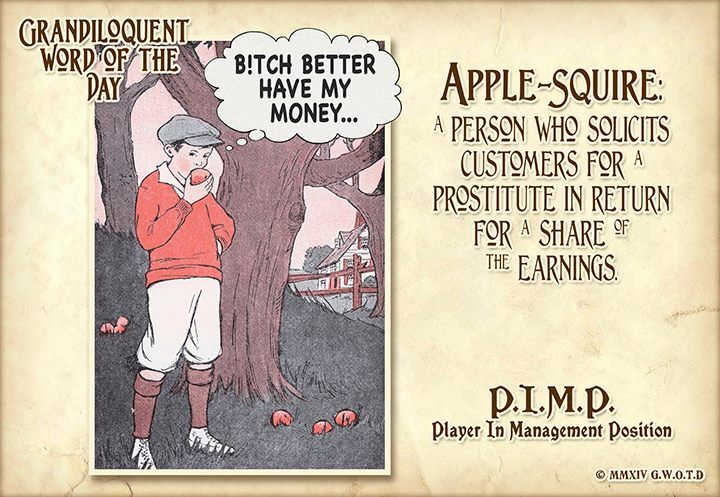 Apple-Squire (AP•ul•SKWY•ur) Noun: -A person who solicits customers for prostitutes in return for a portion of the earnings. -A kept gallant. -A player in a management position (P.I.M.P.)