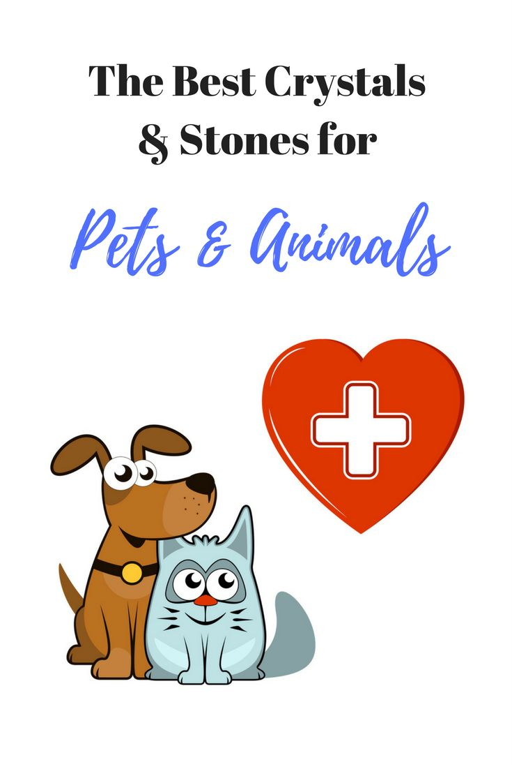 Set of best stones for pets. Mother Nature's healing crystals and stones are a wonderful way to benefit your pet's health and overall life.  Animals instinctively recognize healing crystal and mineral energy as being beneficial. Included with purchase is information on the healing properties of each of the individual stones as well as a brochure on stones and crystals & how to use and care for them. Set includes Amethyst, Bloodstone, Blue Lace Agate, Carnelian, Clear Quartz, Dalmation…