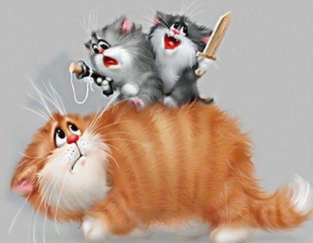 Картинка, коты фото рисунки смешные