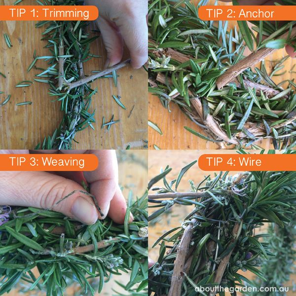 Hot Tips for making a Rosemary Wreath for Anzac Day #australia #autumn #2015 #centenary #aboutthegarden