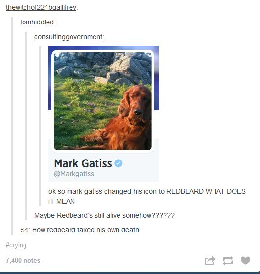 I wouldn't be surprised. It is currently in vogue in the Sherlock community to fake your own death