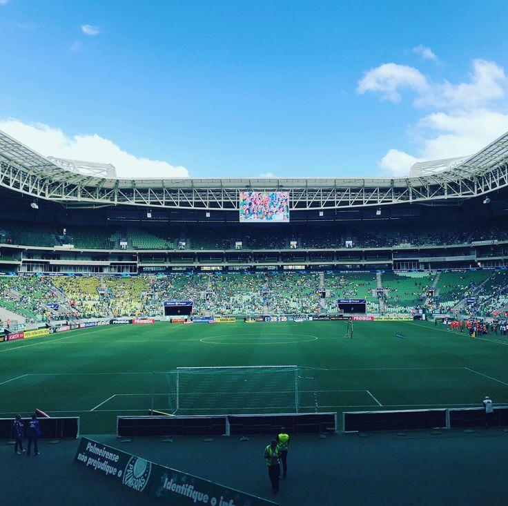 E já que hoje é sábado, vamos que tem Palmeiras!  #palmeiras #verdao #palestra #porco #palestraitalia #allianzparque #renanbarabanov