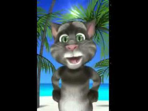 Gato tom canta buenos días - YouTube