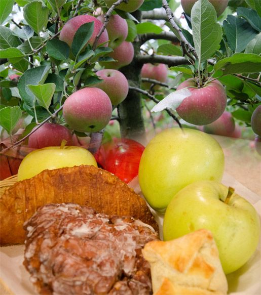 Look at the great sweet treats you can find and make at a Tennessee Apple Orchard.