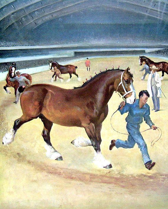 Stampa - il Clydesdale - cavallo razze del cavallo, cavallo tipi - pagina libro annata 1951 - 11 x 9