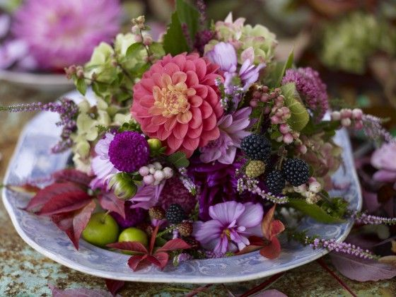 Sensommerens blomster bliver ikke smukkere end de er det lige nu. Brug dem til glødende buketter og smukke dekorationer i lyserøde, lilla og brændt røde nuancer. Sorte brombær er prikken over i'et.