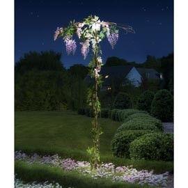 1000 id es sur le th me plantes retombantes sur pinterest for Plantes et jardins avis