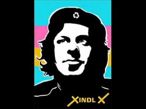 Xindl X Cool v plotě