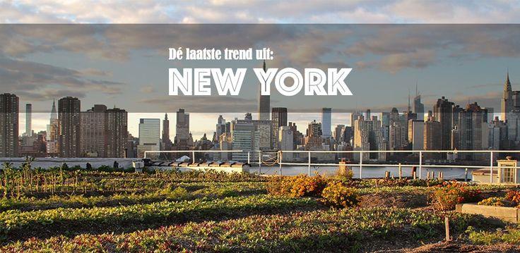 De toekomst van Tuinieren? Urban farming. - Tuininspiratie