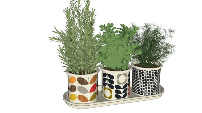Large preview of 3D Model of Orla_Kiely_Herb_Pots