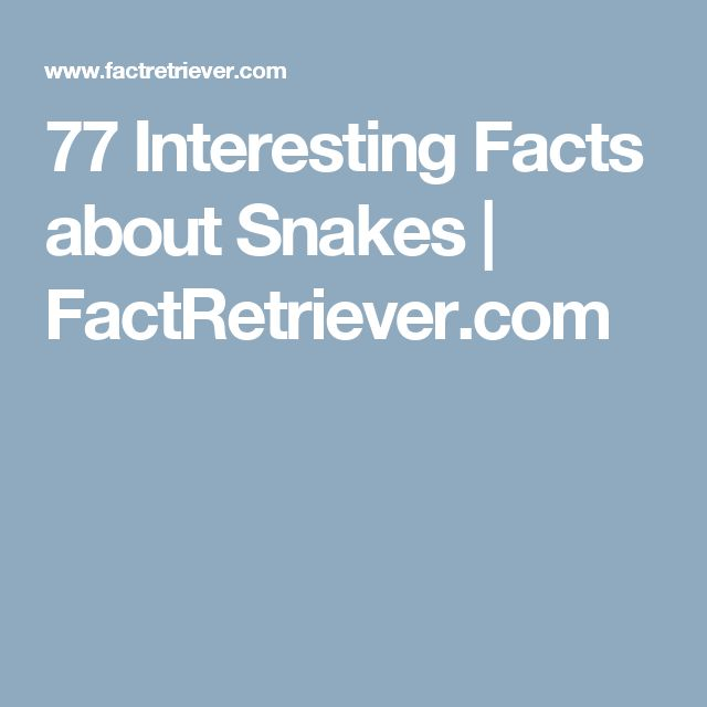 77 Interesting Facts about Snakes | FactRetriever.com