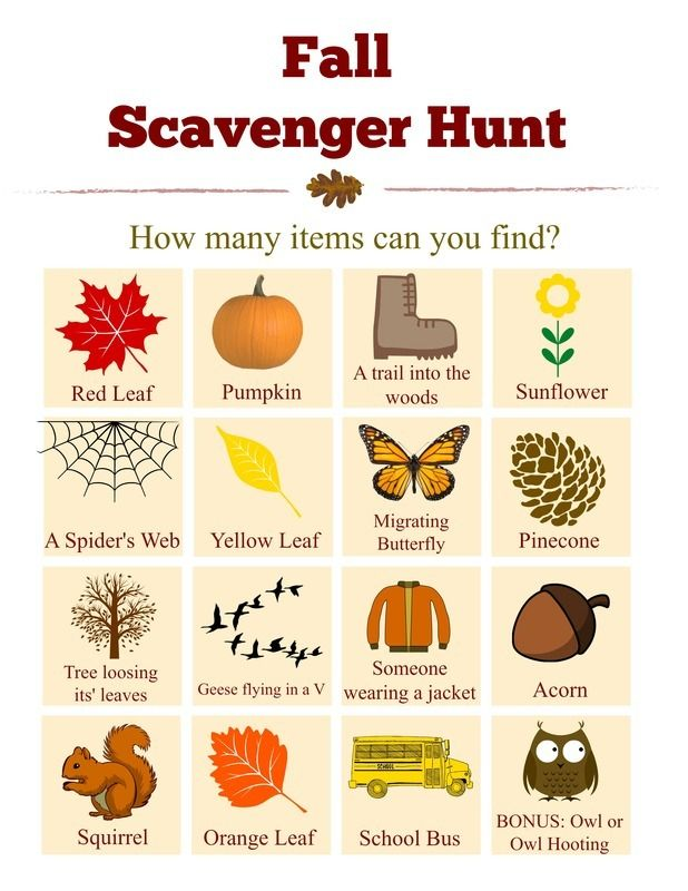 photograph relating to Fall Scavenger Hunt Printable referred to as Drop Scavenger Hunt Record w/cost-free printable! Printables