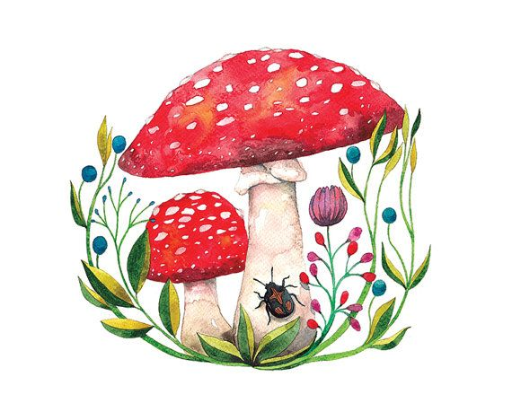 Mushrooms Watercolor Illustration Print Red White Green Nature Flowers Berries Bug Woodland