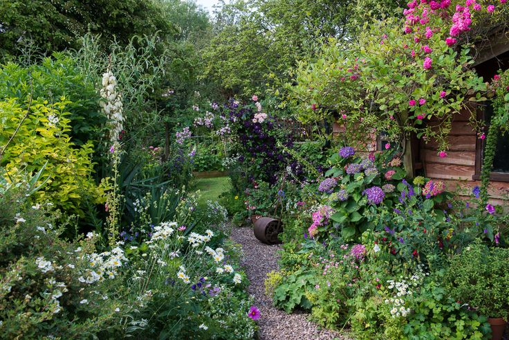 Midsummer Cottage Garden