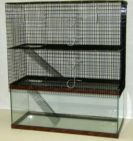 Two-story 20 gallon (long) aquarium tank Topper (RT-635) from Martin's Cages. Perfect cage/housing idea for mice, gerbils, hamsters, degus, or any small rodent in my opinion!