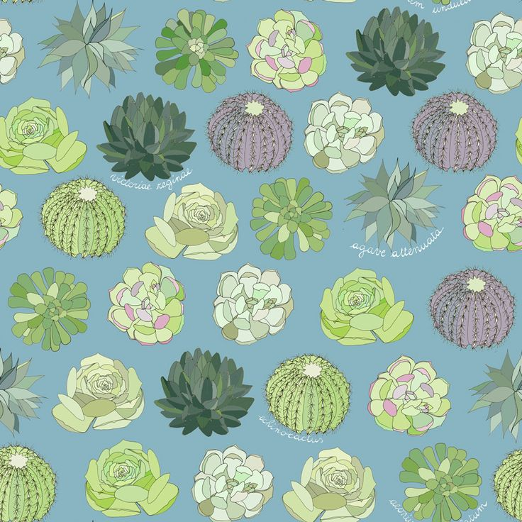 Succulent Garden is in the Spoonflower Creativebug Contest, please vote it!