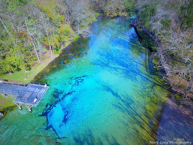17 Best Images About Blue Springs Gilchrist On Pinterest Parks This Weekend And Receptions
