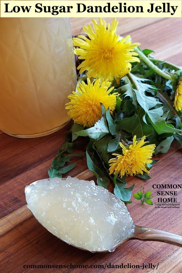 Dandelion Jelly With Less Sugar Recipe With Images Dandelion Jelly Jelly Recipes Jelly