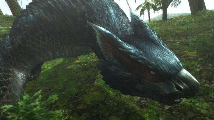 誰も見たことがない「ナルガクルガ」狩猟解禁! 怒濤のイベントラッシュ「ゴールデンメゼポルタ」もスタート! | PlayStation®.Blog