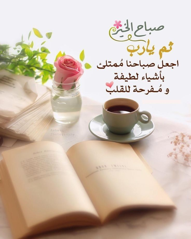 Pin By زهرة الأوركيد On الصباح والمساء Beautiful Morning Messages Morning Greeting Morning Messages
