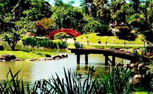 Jardin Japones, Buenos AiresEl Jardín Japonés fue construido en 1967, en ocasión de la visita a la Argentina del entonces Príncipe heredero Akihito, actual Emperador de Japón.  Los lagos del Jardín Japonés están habitados por centenares de peces (carpas) coloridos. Los visitantes pueden alimentar a los peces.