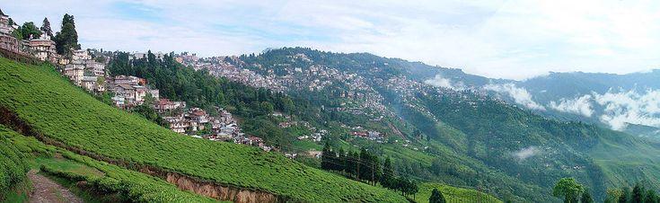 Darjeeling, - SkyscraperPage Forum