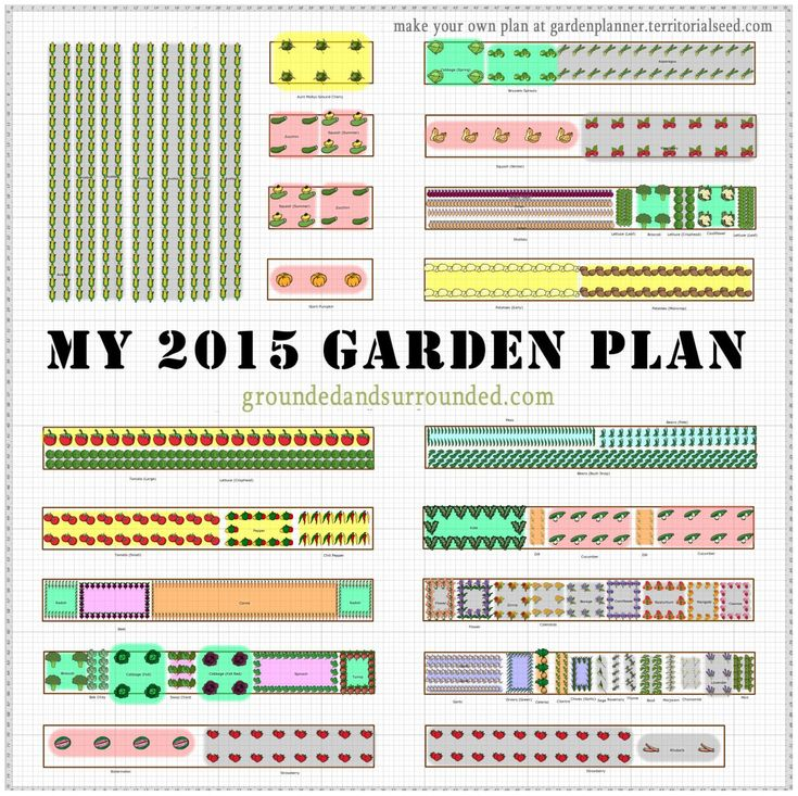 I have often wished that more gardeners shared their large vegetable garden plans online. This blogger is sharing her zone 4 - 5,000 sq ft garden layout and easy ideas in detail. Whether you are growing in a small or large backyard, on a homestead, or just dreaming of having a large garden you will find all the details here to DIY! https://www.groundedandsurrounded.com/vegetable-garden-plan/
