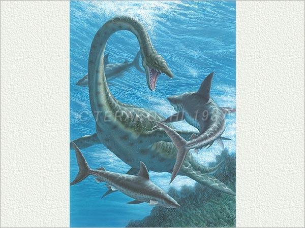 Futabasaurus | Dinosaur Heaven | Pinterest  Futabasaurus | ...