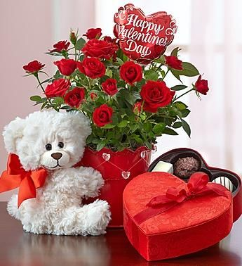 1 800 Flowers Com Valentine S Day Bundle Of Love Rose