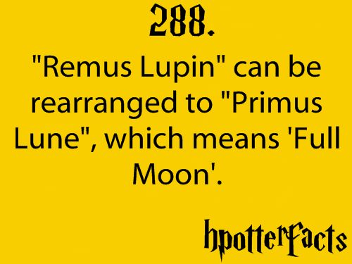 Harry Potter Fact #288: Mind Blown, Remus Lupin, Hpotterfact 3, Hpotter Facts, Mischief Management, Hpotterfact 288, Hp Facts, Harry Potter Facts, Potterhead