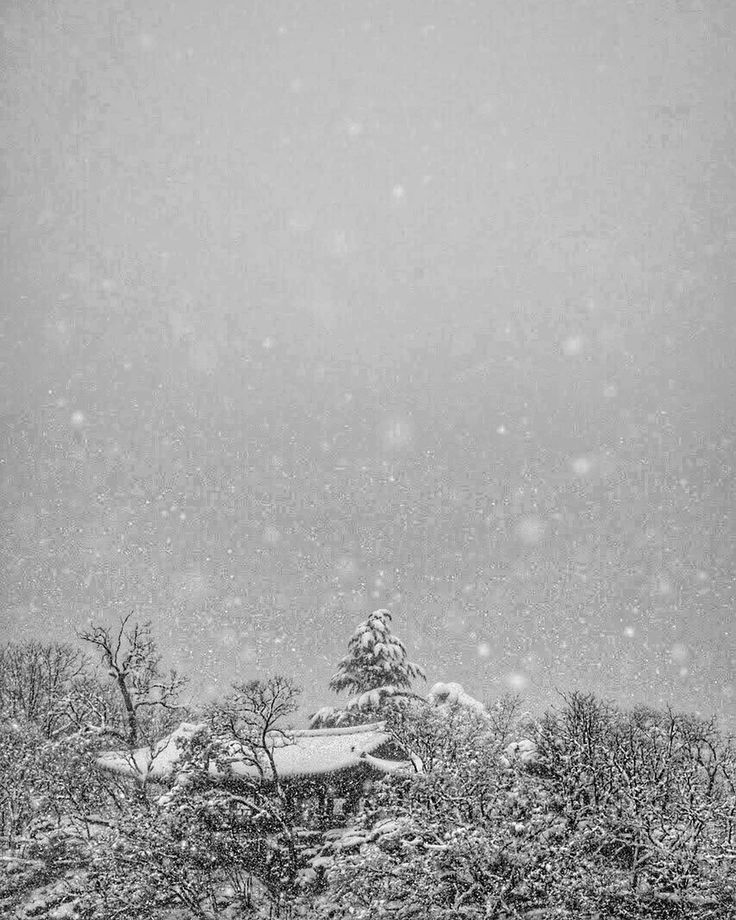 Snow falls on the Jukseoru pavilion in Samcheok Gangwondo South Korea. . . . . @peakdesign . . . #monochromefortheholidays #travel #winter #snow #korea #fallingsnow #blackandwhite #winterwonderland #겨울 #강원도 #삼척 #죽서루 #gangwondo #corée #coréedusud #hiver #눈 #neige