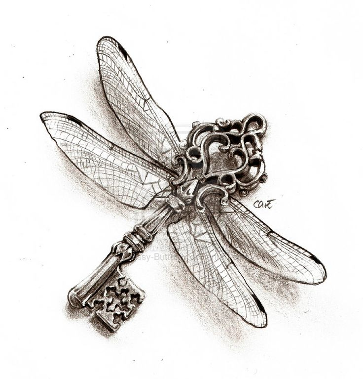 Dragonfly Drawing Tattoo Key of The Dragonfly Tattoo