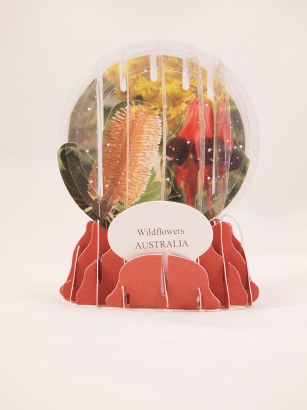 New Souvenir foldable 3D Snow domes Wildflower Australia Christmas greeting card | eBay
