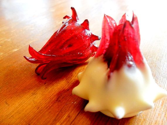 how to make wild hibiscus flowers in syrup