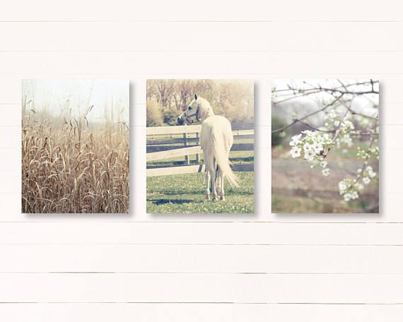 Set of three rustic country landscape photographs. Ive taken three of my rustic farmhouse photographs and created this set. These are three unmatted and unframed photos.  Order this set of three and save 20%.  This set will be custom made for you, so please allow up to 10 days for it