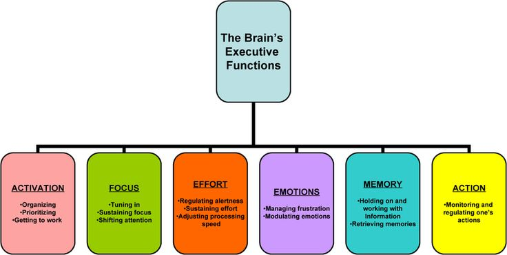 Brain-Based Teaching Strategies for Executive Functions
