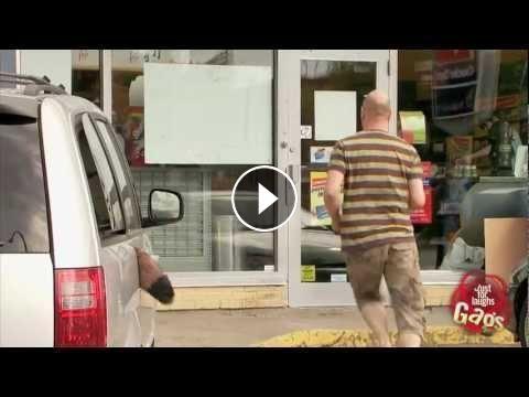 Dog Tail Caught In The Door Prank #HiddenCameraPranks # ...