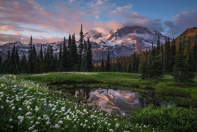 Парк     Mount Rainier     Национальный парк Маунт-Рейнир     Луга     Каровое озеро     Озеро     Отражение     Тихоокеанский Северо-запад     Каскадные горы