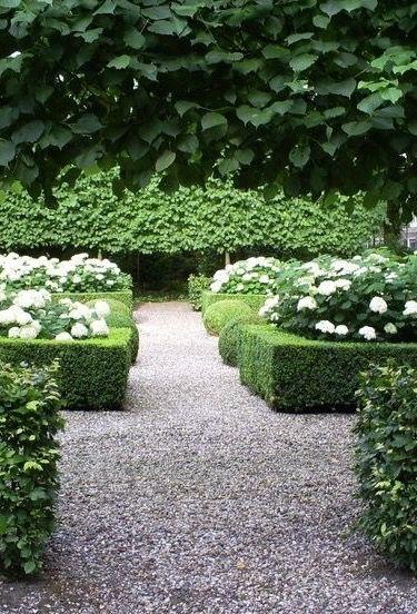 Weer de lage heg, gevuld met bloemen. De muur van bomen op de achtergrond is ook mooi.