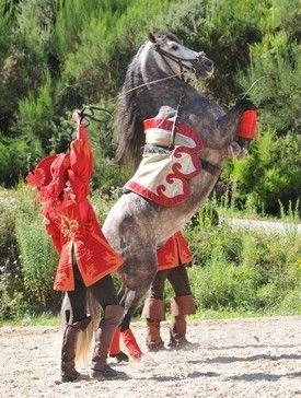 Cheval cabrioleur du spectacle Mousquetaire de Richelieu