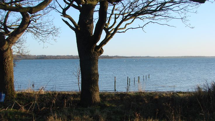 The Stour in Winter