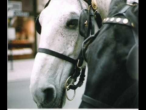 Ένα όμορφο αμάξι με δυο άλογα _ Γρηγόρης Μπιθικώτσης