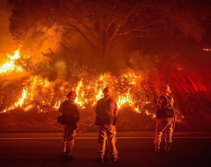FEATURED POST @firefighter_is_life - FT Photo Diary : Firefighters monitor flames on the side of a road as the Detwiler fire rages on near the town of Mariposa California on July 18 2017. California has suffered widespread fires in recent days with a lighting strike near Yosemite National Park sparking a blaze that destroyed more than 26 square kilometers (10 square miles) of forest. See more photos from around the world at http://ift.tt/2kcfaFx : JOSH EDELSON/AFP/Getty Images Credit to…